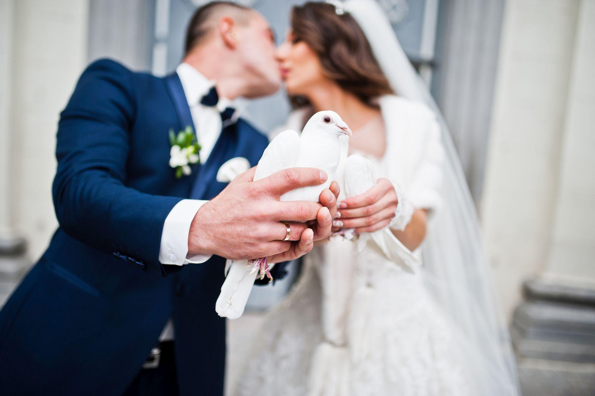 Hochzeitsunterhaltung mit Zaubershow
